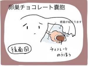 siga_151215_2