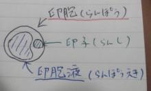 hatanaka_120726_1